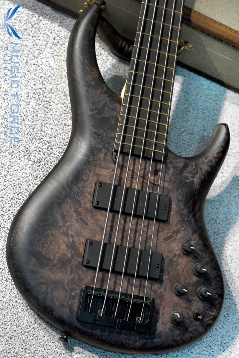 MTD 535-24 US Custom Bass Tulipwood Body/Maple Burl Top-Hand Rubbed Stain Trans Black Burst w/Ebony FB(2016년산/신품)