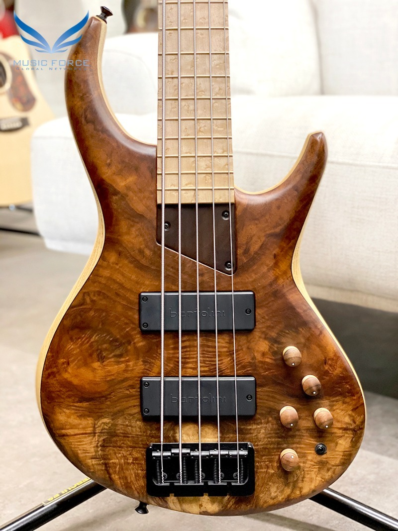 MTD 535-21 US Custom Bass Ash Body-Figured Walnut Top w/Birdseye Maple FB(2016년산/신품)