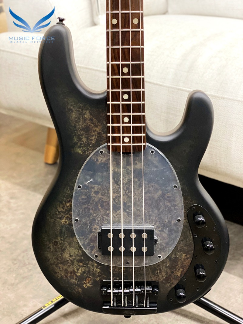 Sterling by Musicman Ray34PB-Trans Black w/Roasted Maple Neck & Rosewood FB (2020년산/신품)