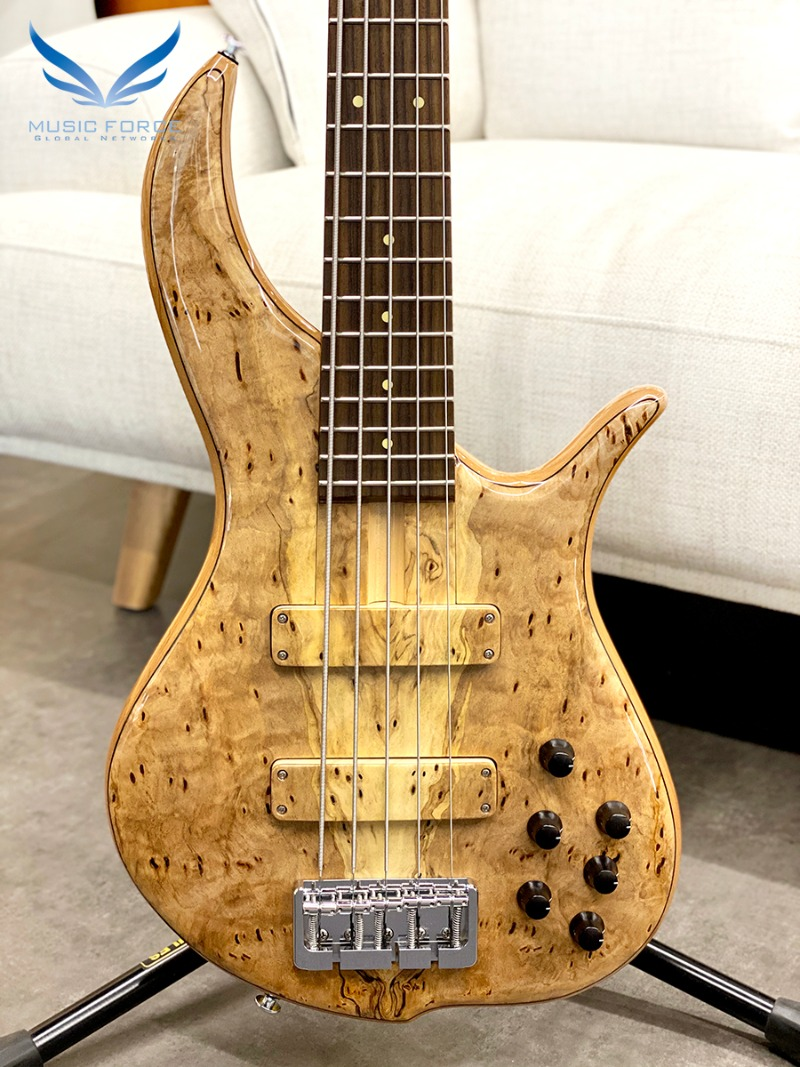 F-Bass BN5 Pecky Spalted Burl Maple Top w/Indian Rosewood FB(신품)